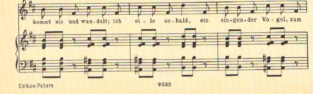 SchuBeetEx.4c